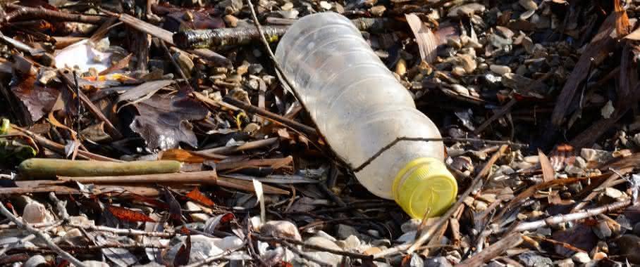 Plastikflasche in der Natur