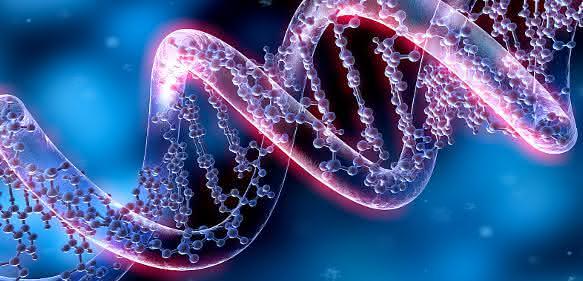 Genome-Editing-Verfahren: CRISPR als am schnellsten wachsendes Segment prognostiziert