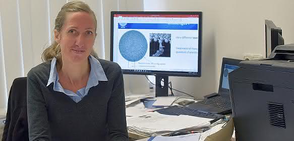 Forschungsförderung durch ERC-Grant: Vom Quasiteilchen zur hochsensiblen Sensorik
