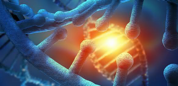 Genregulation: Reaktivierung von Genen ohne Risiko