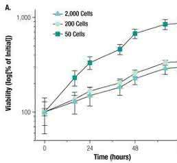 Echtzeit-Viabilitätsbestimmung von PC3-Sphäroiden