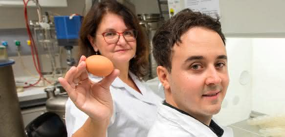 Labor mit Wissenschaftlern und Ei