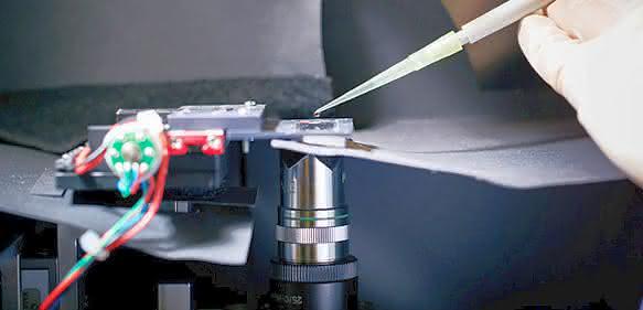 Umbruch in der medizinischen Diagnostik?: Hologramm für Moleküle ermöglicht schnelle POC-Tests