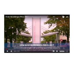 Screenshot Kurzfilm der Preisträger
