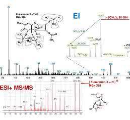 EI-Fragmentierung in der GC-MS