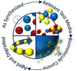 Lebenszyklus von Nanopartikeln