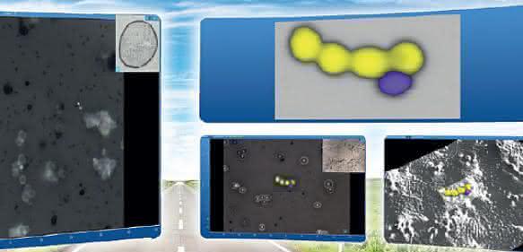 Schnelles Raman-Imaging: Einfache Navigation und stets fokussiert