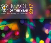 Olympus sucht die besten lichtmikroskopischen Bilder dieses Jahres.