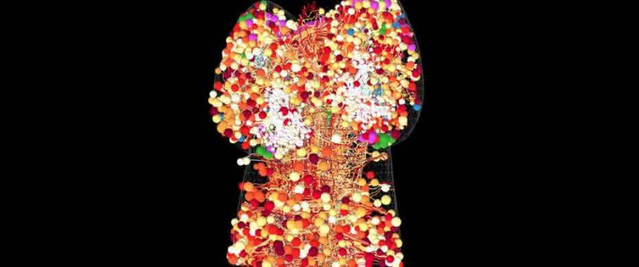 3D-Elektronenmikroskopie: Die Vermessung des Gehirns