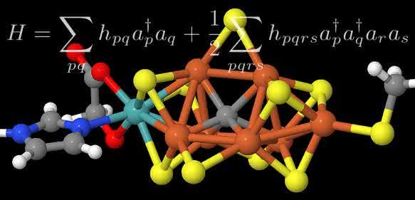 Modell des aktiven Zentrums des Enzyms und eine für die Berechnung zentrale mathematische Formel.