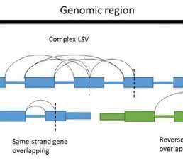 RNA-seq: Bioinformatics Tools