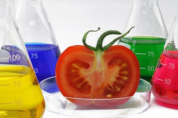 Phytoextrakte: Positionspapier gibt Marktüberblick und nennt Forschungsziele