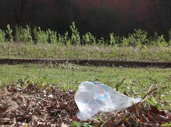 Positionspapier zu Plastiktüten: Plastiktüte, Papiertasche oder Jutebeutel?