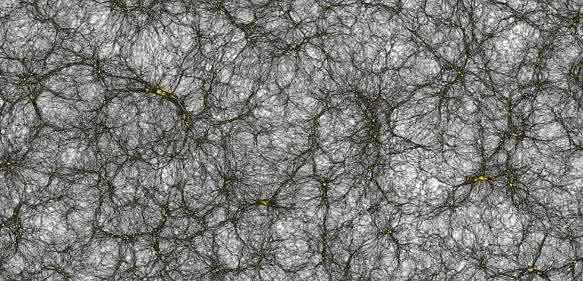 Virtueller Kosmos: Simulation zur Entwicklung des Weltalls