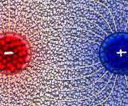 Der Temperaturunterschied zwischen einem heißen (rot) und einem kalten (blau) Nanoteilchen führt zu einer Ausrichtung der Moleküle in der umgebenden polaren Flüssigkeit, welche wiederum eine anziehende Kraft zwischen den beiden Teilchen verursacht. (Copyright: Andela Šarić / Peter Wirnsberger / University of Cambridge)