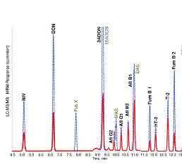 ESI-Chromatogramme