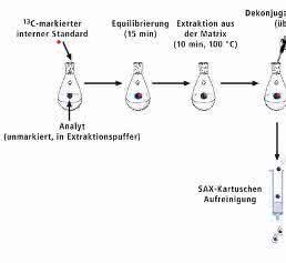 Probenvorbereitung mit Stabilisotopenverdünnungsanalyse