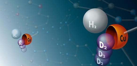 Sammelbecken für schweren Wasserstoff: An Kupferatome in einer Metall-organischen Gerüstverbindung binden bevorzugt Moleküle der schweren Wasserstoffisotope Deuterium und Tritium – die Metallatome sind hier daher symbolisch als Schalen dargestellt. (© Universität Leipzig / Thomas Häse)