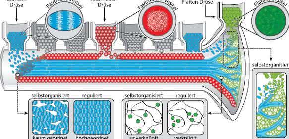 Grüne Chemieproduktion am Meeresgrund