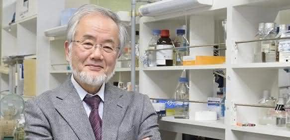 Der Nobelpreis für Medizin geht in diesem Jahr an den Japaner Yoshinori Ohsumi für die Entdeckung des sogenannten Autophagie-Mechanismus. (Bild: Tokyo Institute of Technology).