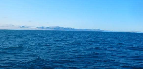 Die Vielfalt der Viren in Ozeanen ist dreimal höher als bislang bekannt. Copyright: Kenneth Wasmund