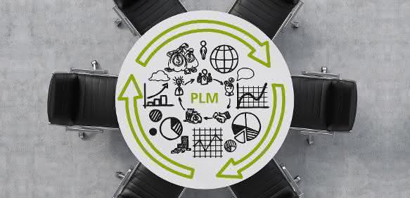 PLM Professionals
