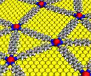 Quasikristallines Netzwerk aus mit para-Quaterphenyl-Dicarbonitril vernetzten Europium-Atomen auf einer Gold-Oberfläche (gelb). (Bild / Fotograf: Carlos A. Palma / TUM)