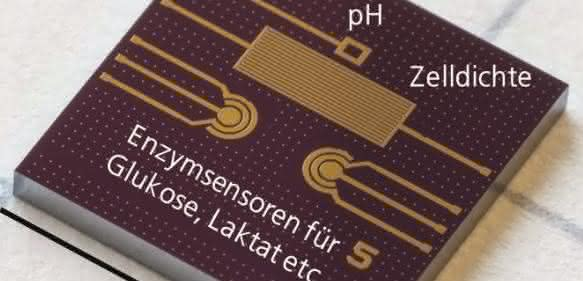 Multi-Sensor Chip (®Fraunhofer IMS)