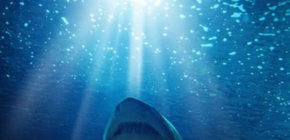 Den Tiefenströmungen der Ozeane auf der Spur: Metallfreie Forschungsumgebung