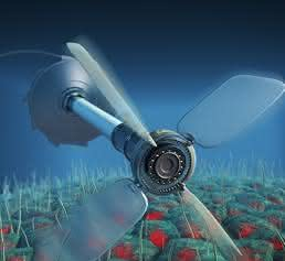 Lebende Systeme wie die Flimmerhärchen von Epithelzellen verletzen das Prinzip des detaillierten Gleichgewichts. Ihre aktive Bewegung könnte theoretisch genutzt werden, um kleinmaßstäbige Maschinen anzutreiben. (Bild: C. Hohmann (NIM), M. Leunissen (Dutch Data Design))