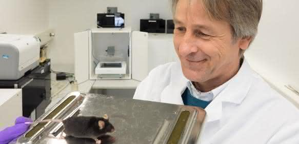 Dr. Dirk Montag