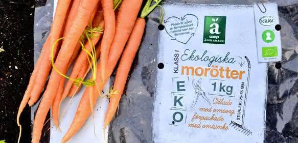 Folienverpackungen für frisches Gemüse