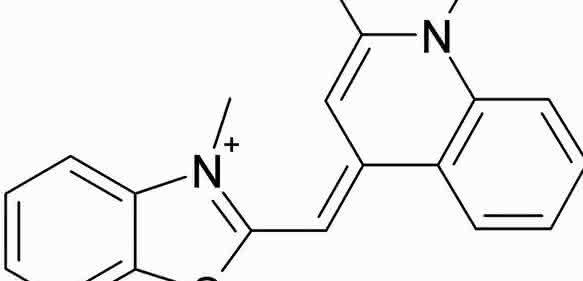 Struktur von SYBR® Green