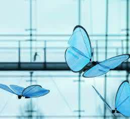 Festos Emotion Butterflies