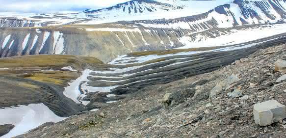 Blick ins Longyearbyen-Tal auf Spitzbergen Für die Forscher auffallend hier die schwarzen Tonsteine der Post-PETM Gilsonryggen Formation. (© Dr. Torsten Wappler / Universität Bonn)