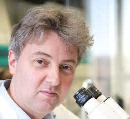Prof. Dr. Oliver Brüstle