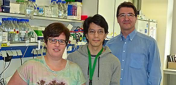 Heidelberger Forscher