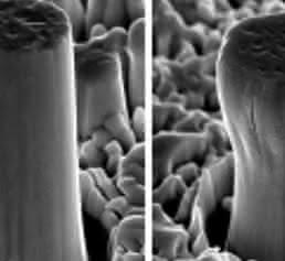 Mikro-Säulen