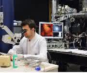 Hochleistungs-Lichtmikroskopie