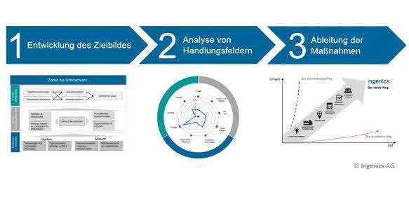 Ingenics AG: Strategische Bedarfsanalyse Schema