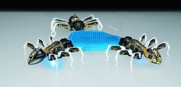 Bionische Ameisen