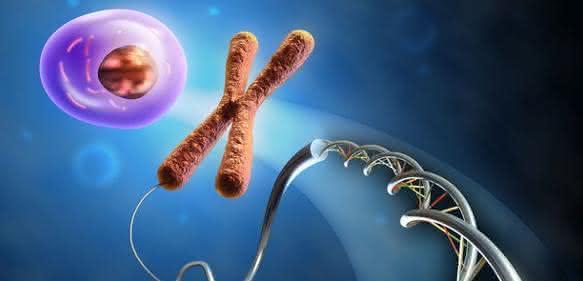 RNA-Expressionsanalyse: Screening lebender Zellen mit RNA-Detektionssonden