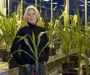 Prof. Dr. Chris-Carolin Schön