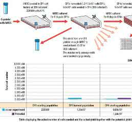 Zell- und Mikrobiologie: Optimized cell culture: for bench and beyond