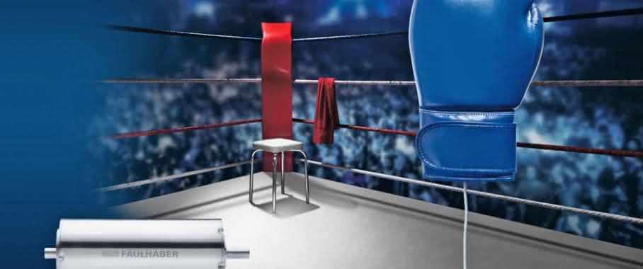 Faulhaber sieht sich als Chef im Ring: Fliegengewicht mit einem ordentlichen Punch