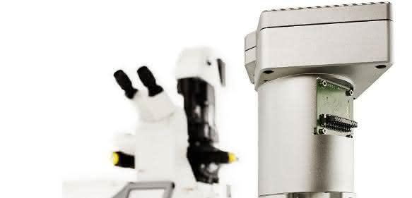 Hybriddetektor für Einzelmolekülmessung