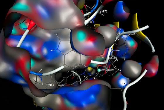 Das aktive Zentrum einer bakteriellen Glutaminyl-Zyklase