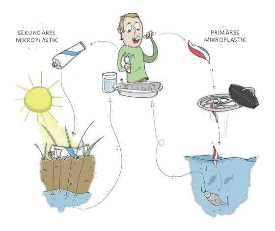Biowachspartikel: Alternative zu Mikroplastik