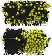 Modellsystem beschreibt Phasenübergang: Aktive Teilchen können Phasenübergang erleichtern