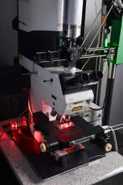 Pharmazeutika schneller testen: Holographische Mikroskopie plus optische Pinzette